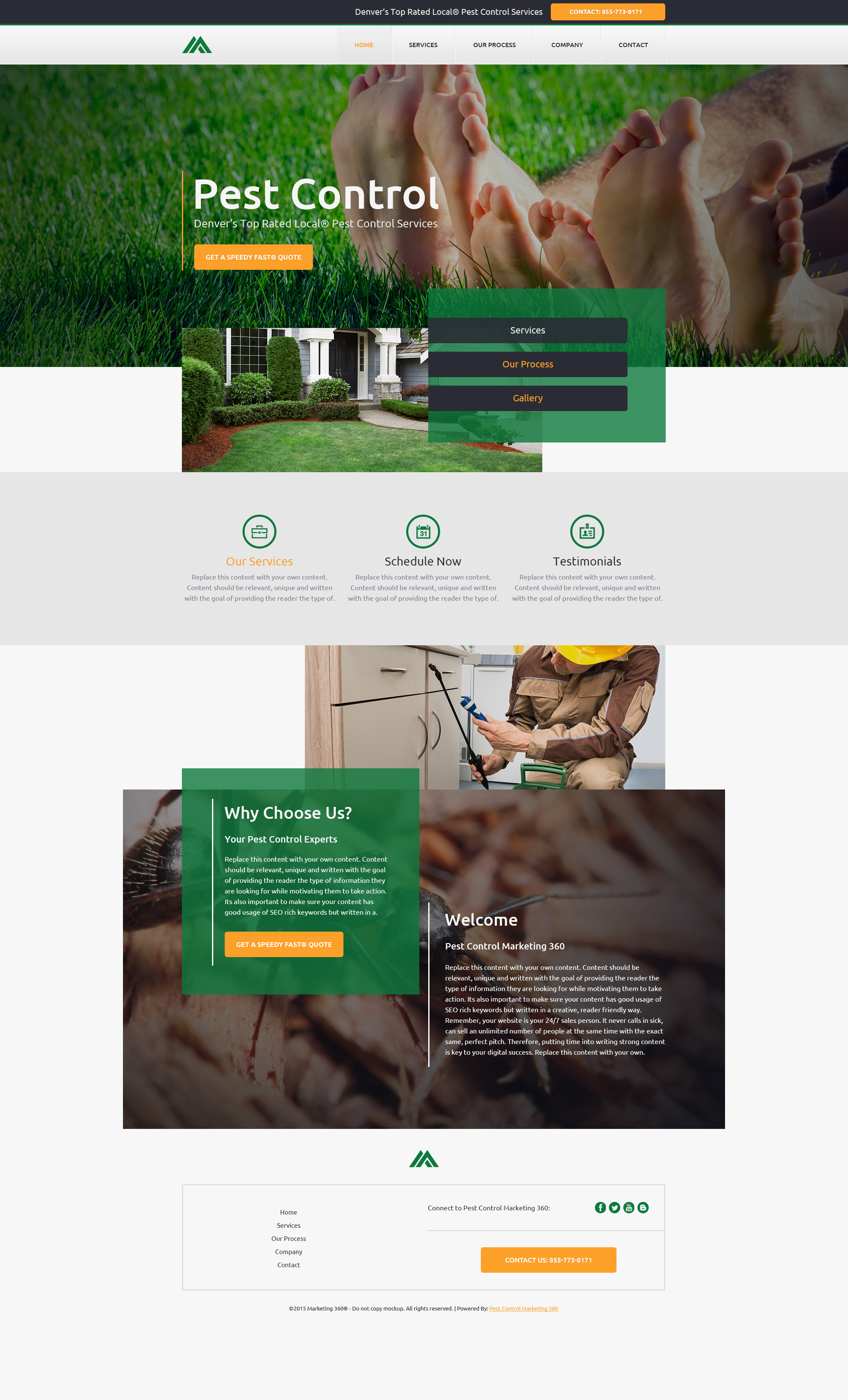 pest control website templates mobile responsive designs. Black Bedroom Furniture Sets. Home Design Ideas